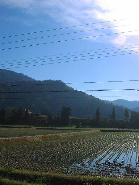 新潟県南魚沼市は小春日和でポカポカです