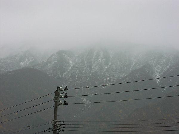 今朝は雨が降っています