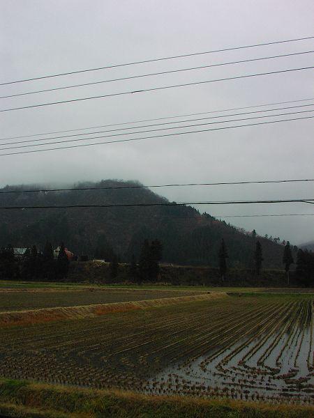 また雨が降り始めました