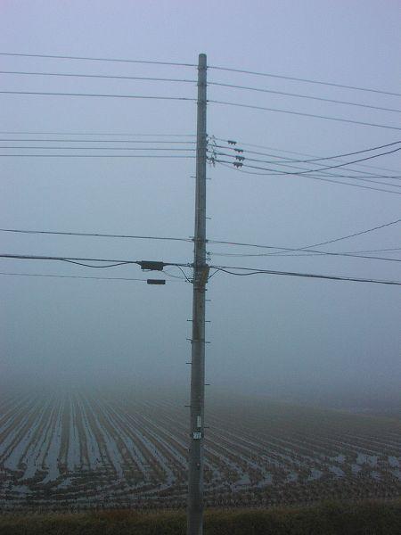 霧が深い朝です