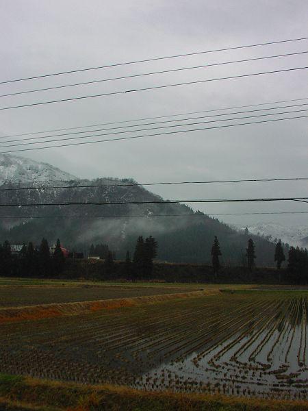 山の下の方まで白くなっています