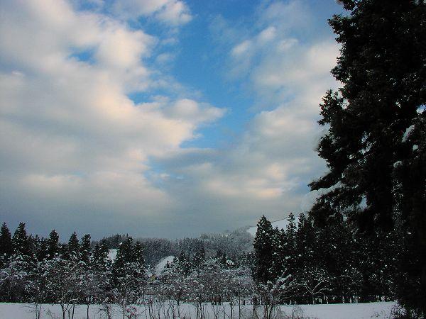 今朝は冷え込みが厳しく、道路も窓も凍っています