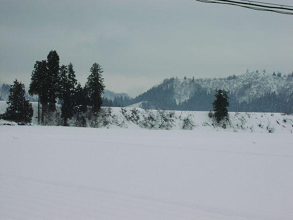 午後になって雪が止んで天気が落ち着いています