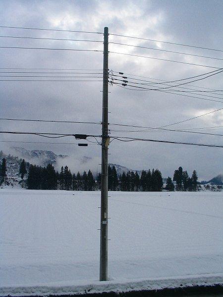 今日もときおり雪が降っています