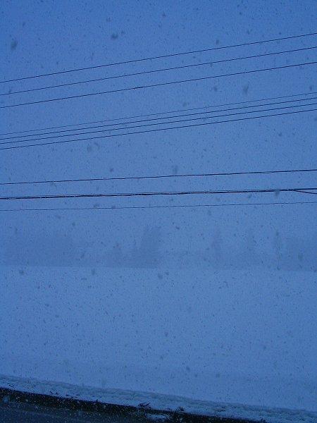 激しく雪が降ってきました