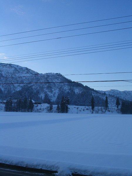 冷え込みがきびしい朝で、空が澄んでいます