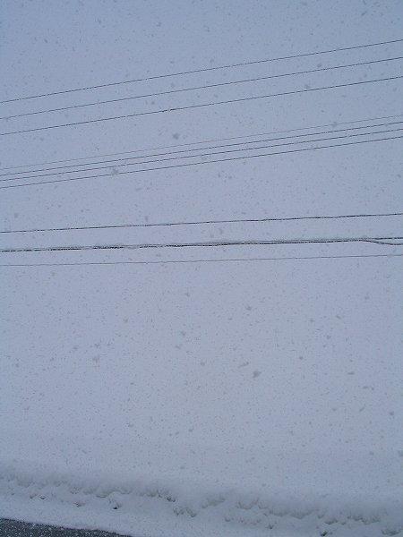 雪が激しく降っています