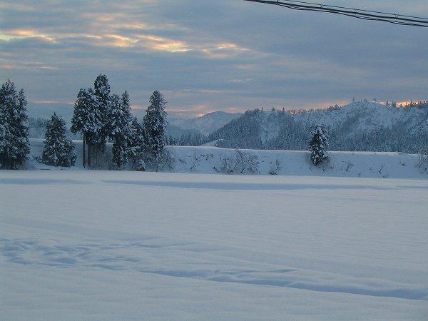 今年いちばんの冷え込みの真冬日でした