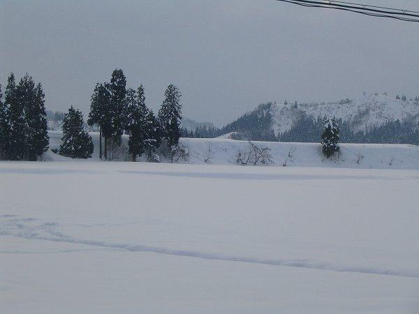雪が止んで道路が乾いています