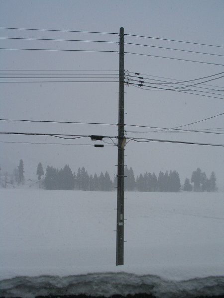 雨から雪に変わりました
