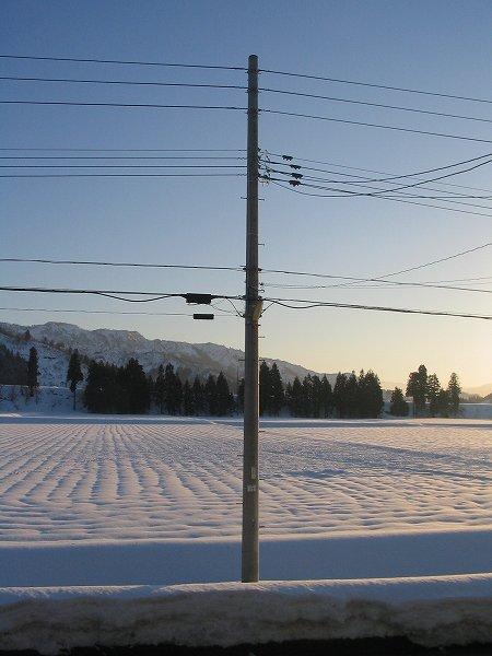 田んぼの雪が解けて雪面にえくぼができました