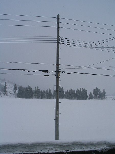予報では「大雪に注意」でしたが・・・