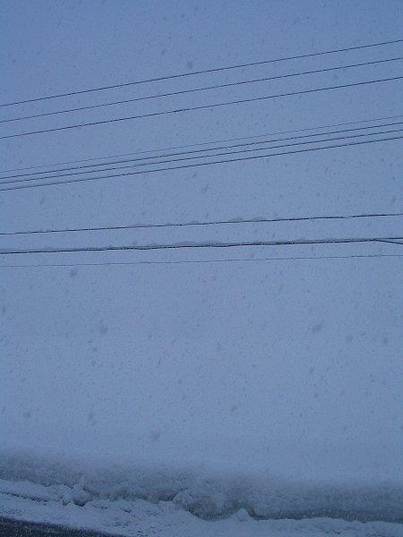 魚沼は大雪・・・激しく雪が降っています