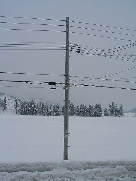 寒いですが、雪の降り方は弱まっています
