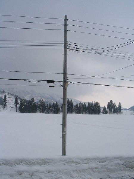 また少し雪が積もりました