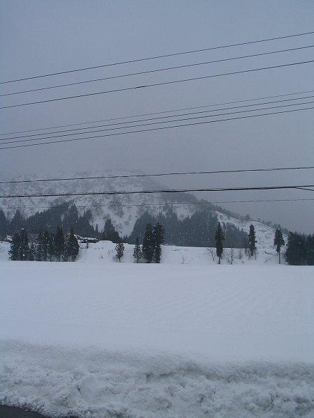 ずっしりと重たい雪になっています