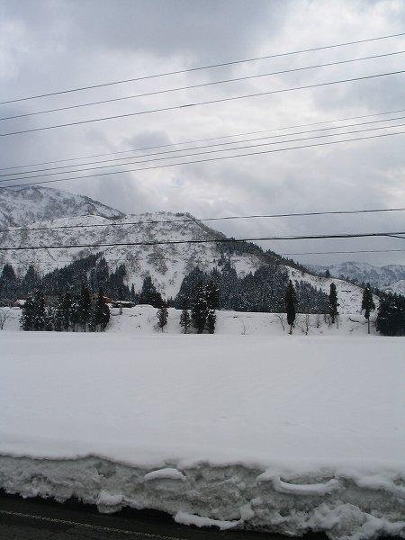 ときおり雪がちらついています