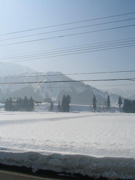 雪面が陽ざしを反射してすごくまぶしいです
