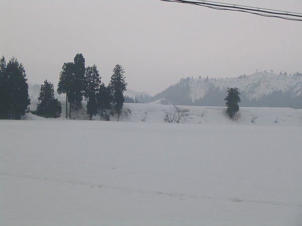 昨晩は雨で雪が少なくなってきました
