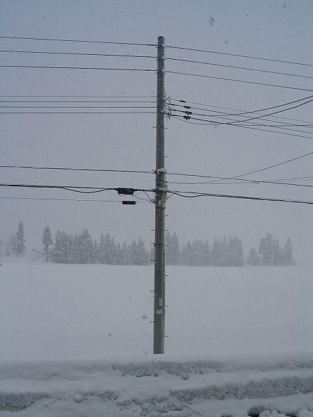 魚沼産コシヒカリの田んぼはまた真冬に戻りました