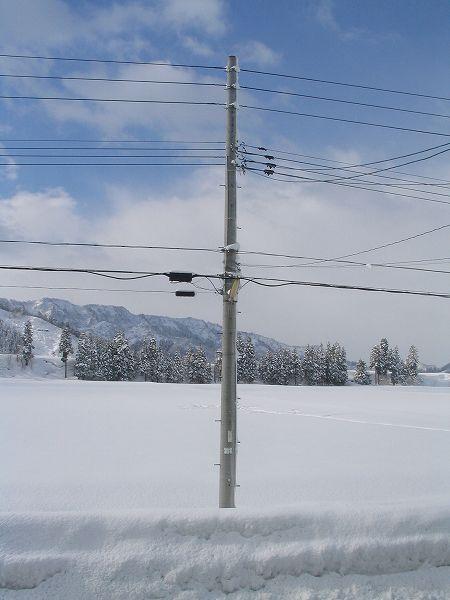 魚沼産コシヒカリの田んぼでは雪が止んで青空が見えてきました