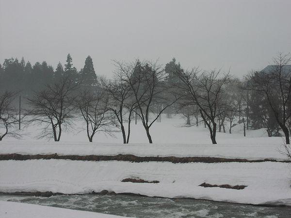 雪解けが進んで水無川の土手も見えてきています