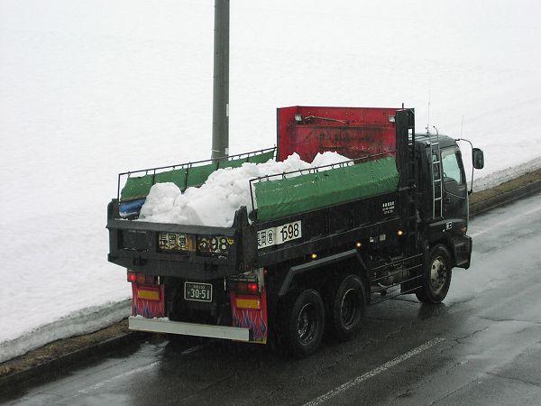 水無川の雪捨て場にダンプがひっきりなしに雪を運び込んでいます