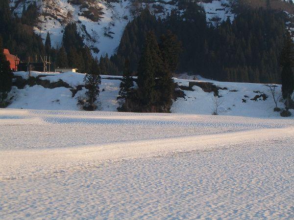 一日でかなり雪解けが進みました@魚沼産コシヒカリの田んぼ
