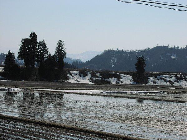 新潟県南魚沼市では春本番のぽかぽか陽気の日が続いています