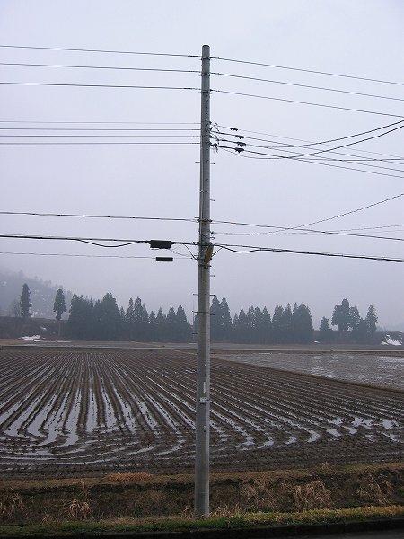今朝の魚沼は久しぶりに雨です
