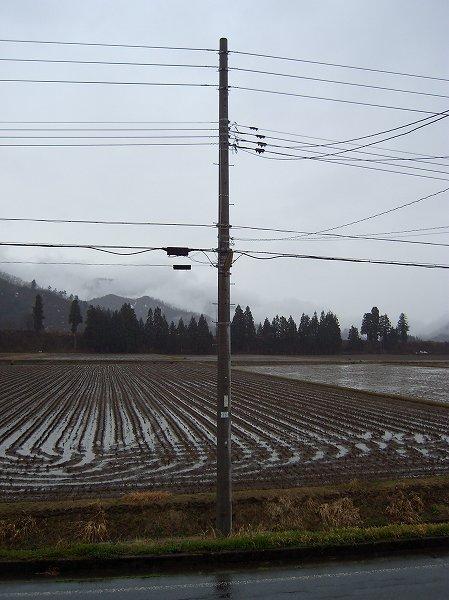 午後は雨降りでした