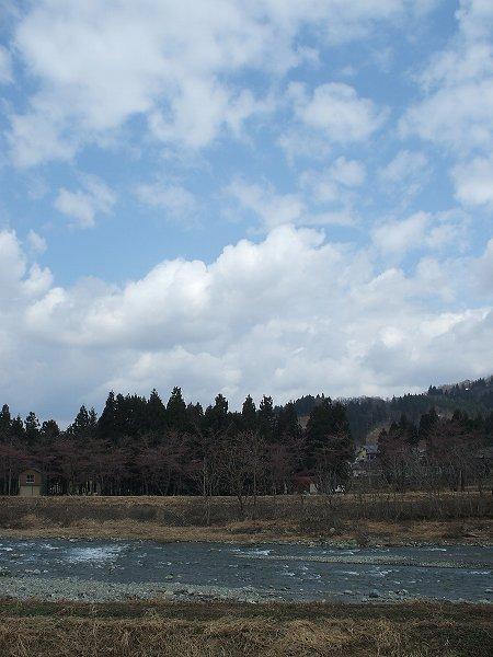 魚沼産コシヒカリの田んぼでは青空が見えていますが、少し肌寒く感じます