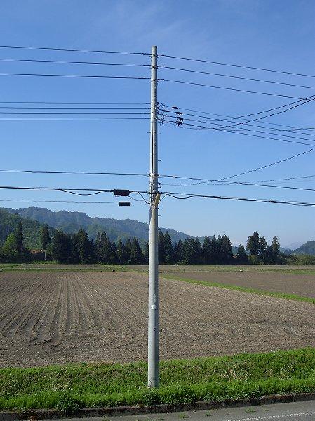 魚沼産コシヒカリの田んぼは今日も朝からいい天気です