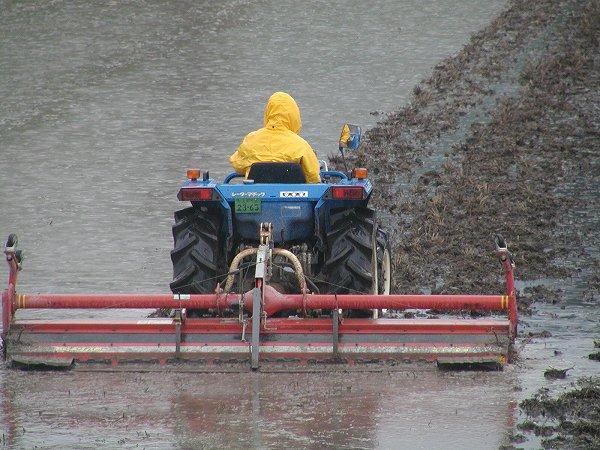 雨の中、トラクターによる代かき作業が行われています