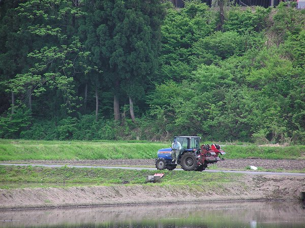 雨上がりの田んぼでトラクターが働いています