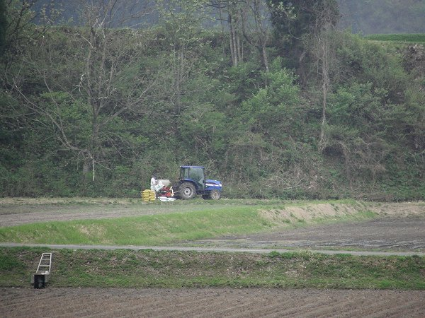 田んぼではいよいよトラクターによる田起こし作業が始まりました