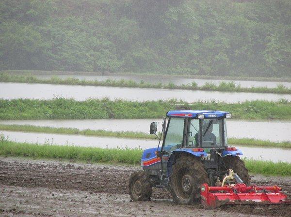雨の中、トラクターで作業が行われています
