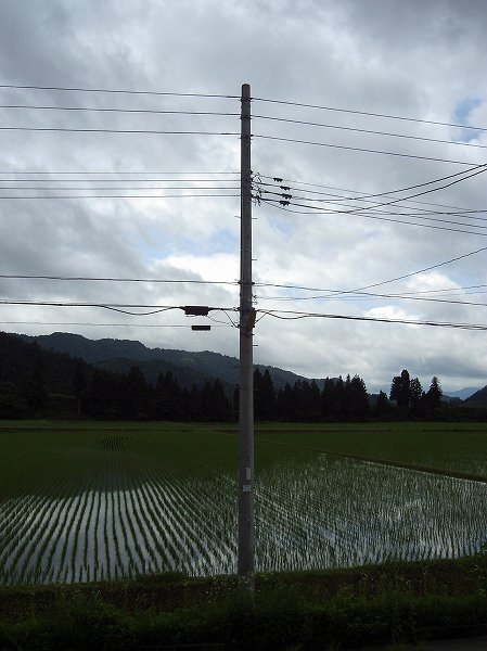 今日の新潟県南魚沼市はちょっと肌寒く感じます