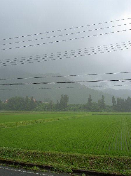 時折雨が土砂降りになっています