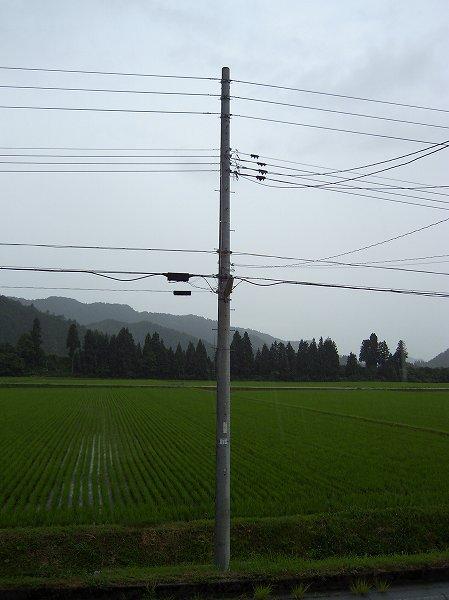 雨が降り出しました