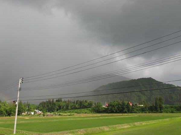 夕方、突然の激しい雨が降りました