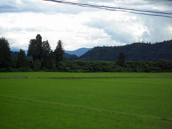 昼間は空気が澄んで爽やかな夏空が広がっていましたが、夕方近くになって雲が多くなってきました