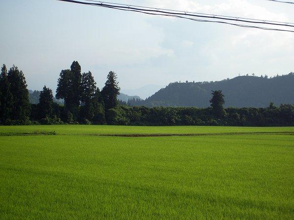 新潟県南魚沼市は夕方近くになってもまだけっこう暑いです
