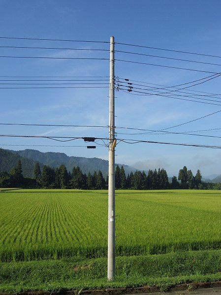 新潟県南魚沼市は久しぶりに夏らしい日になりそうです