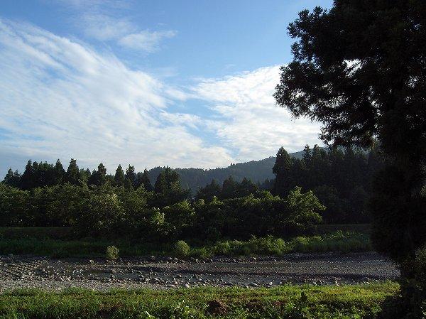 水無川の朝は涼しくて爽やかです
