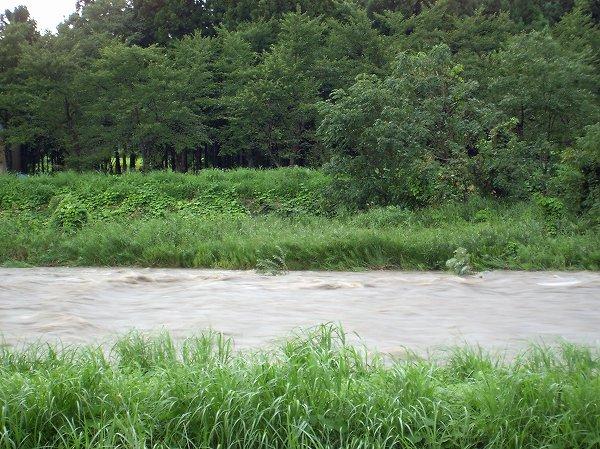 今日もまた激しい夕立があり、水無川は激しい濁流になっています