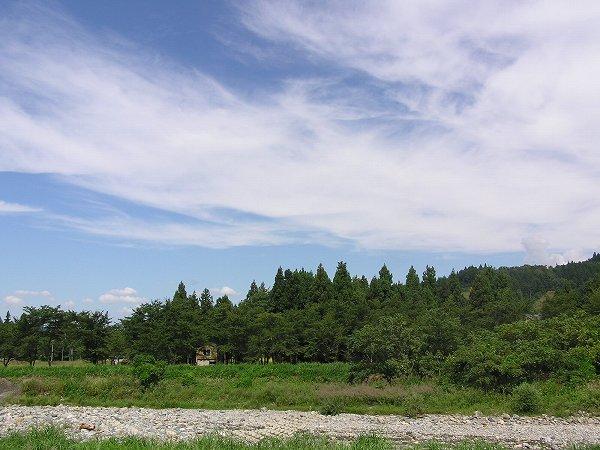 今日は雲がやや多いですが、爽やかな天気で農作業日和です