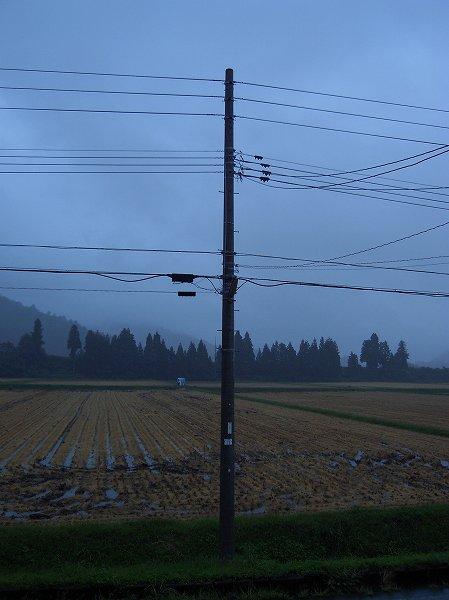 今日は雨・・・稲刈り作業はお休みです