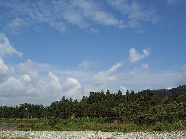 やわらかい陽ざしが心地いいです@新潟県南魚沼市