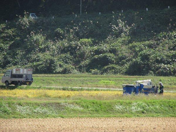 もう少しで稲刈り作業が終わります